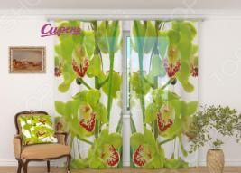 Фототюль Сирень «Зеленая орхидея»