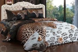 Комплект постельного белья Softline 09624. Евро