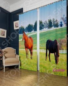 Фотошторы Сирень «Лошади в поле»