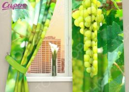 Фотошторы Сирень «Виноградная лоза»