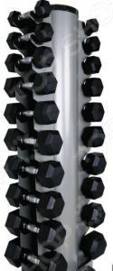 Набор: стойка и гантели Larsen NT809B