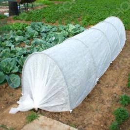 Парник «Богатый урожай»