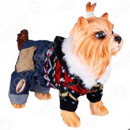 Свитер для собак DEZZIE «Стрит». Цвет: мультиколор