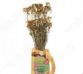 Букет травяной для бани Банные штучки «Пижма»