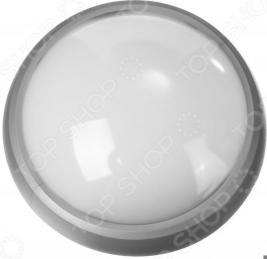 Светильник светодиодный Stayer Profi PROLight 57362-60-S